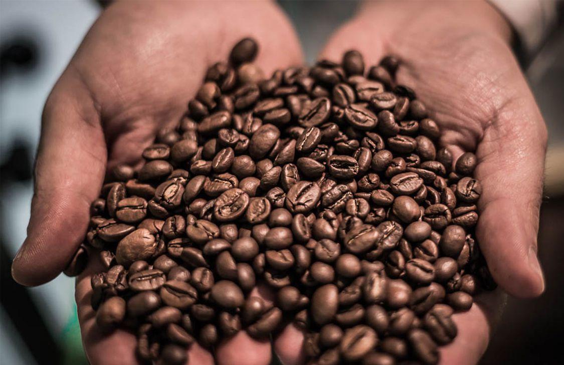 Oro Nero Caffè - Caffè