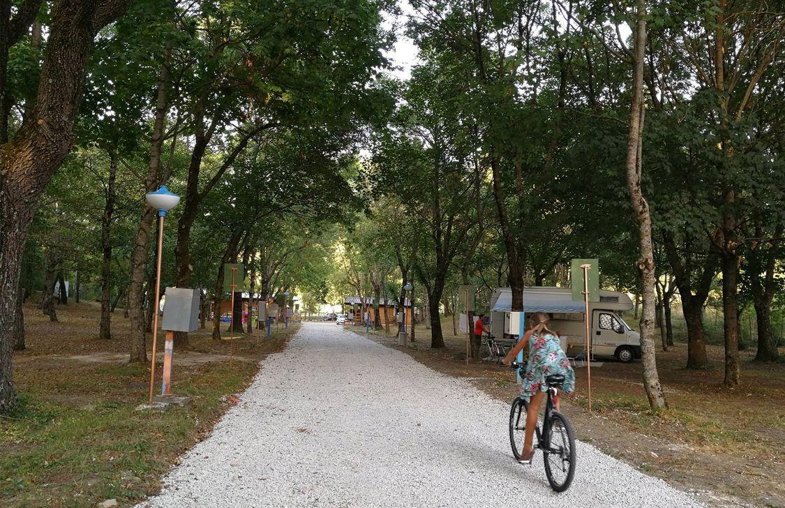 Alto Savio Camping - Vialetto
