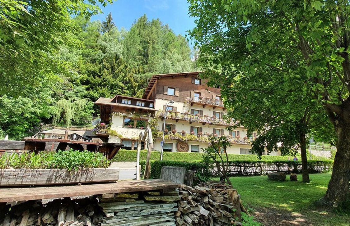 Hotel Daniela - Esterno