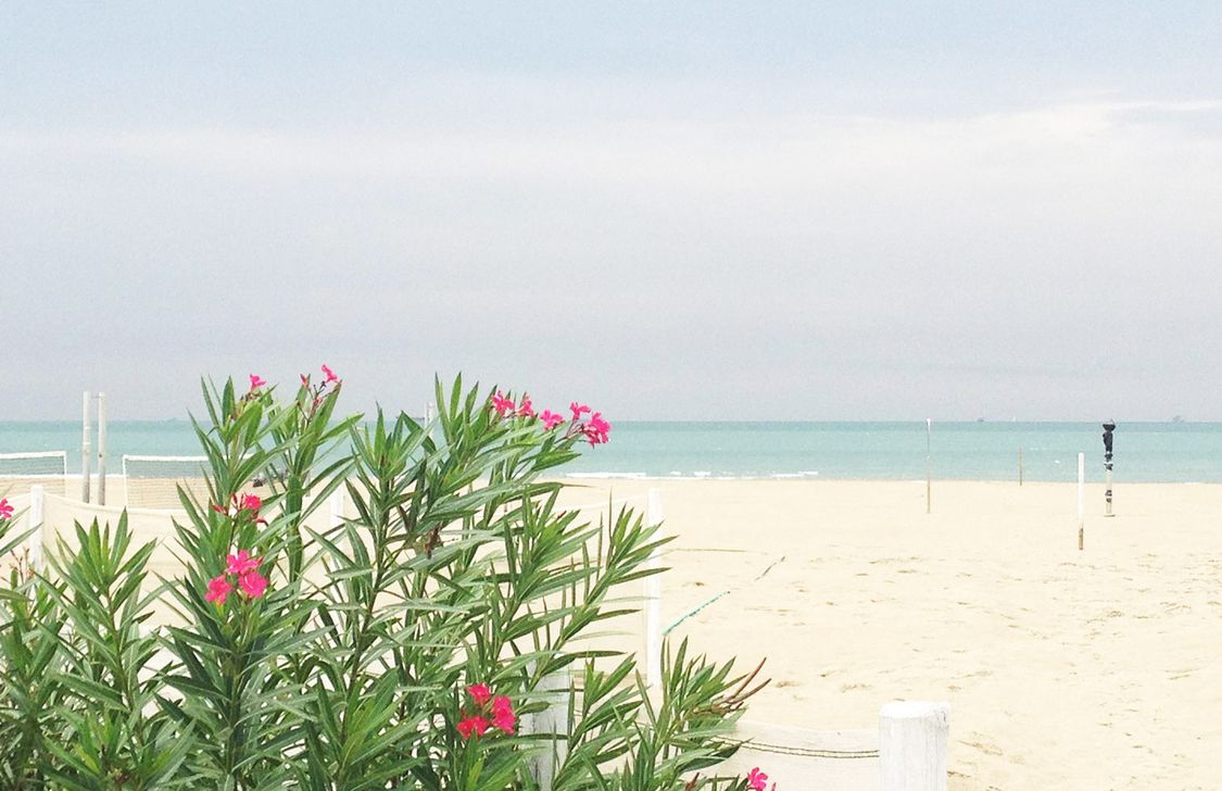 Bagno Charlie - Spiaggia