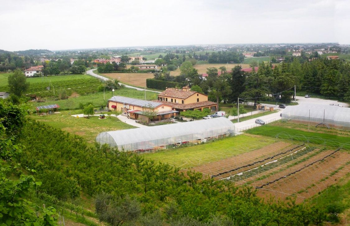 Agriturismo Perugini - Vista