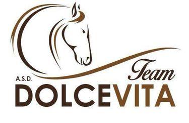 Centro Ippico dolcevita - Logo