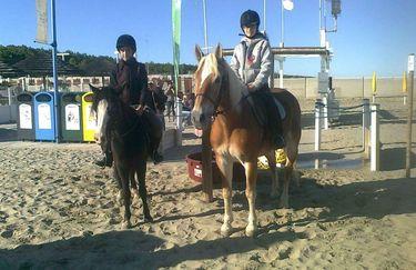 Scuderie del Borgo cavallo 4
