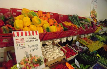 Nardiello Maria negozio 2