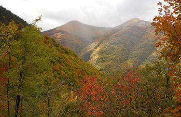 Agriturismo Camperato autunno