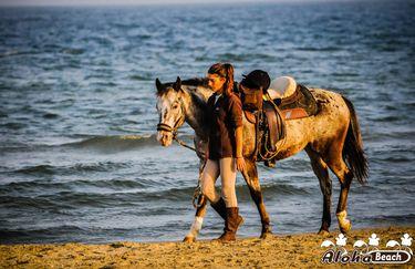 Aloha Beach passeggiata a cavallo 10
