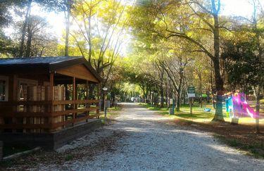 Alto Savio Camping - Camping