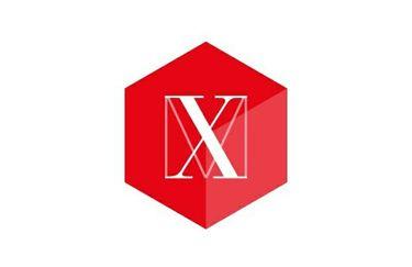 Max Max - Logo