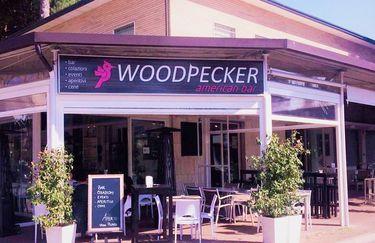 woodpecker - ingresso