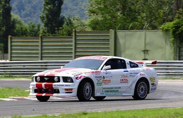Top Driver - Mustang