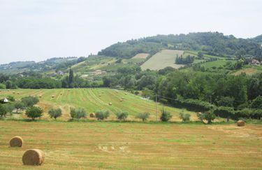 Agriturismo Le Spighe - Campo