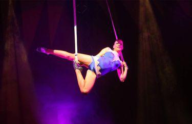 circo millennium - artisti