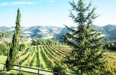 Agriturismo La Cerreta - Paesaggio