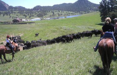 Bosca  Ranch - campagna