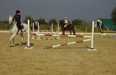 Centro Ippico La Botte - Cavallo
