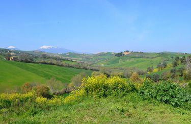 fattoria-cerreto-panoram2