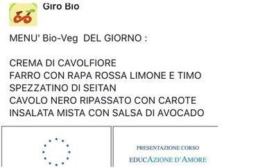 Giro Bio - Esempio menù