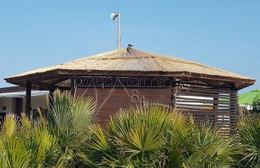 Playa del Carmen - Capannina