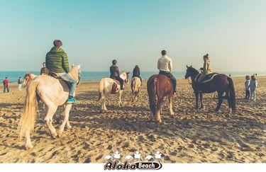 aloha-beach-cavallo6
