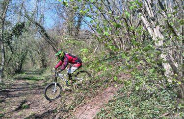 Bike Park 5