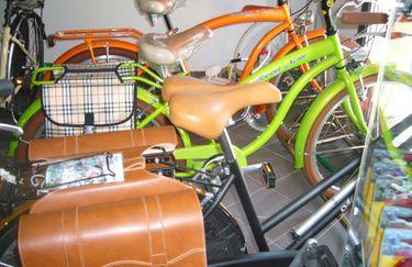 masini-bici