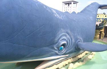 Atlantica - Balena