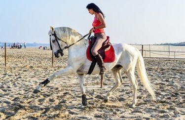 Aloha Beach passeggiata a cavallo 7
