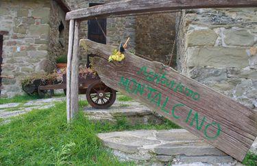Agriturismo Montalcino esterno 3