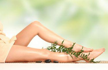 Holistic-Wellness-gambe