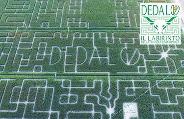 Labirinto di Dedalo - Labirinto
