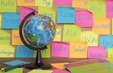 madrelingua-lingue4