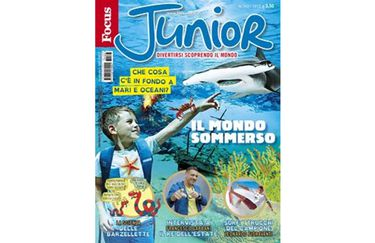 focus-junior