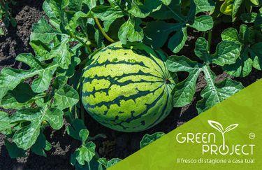 Green Project - Prodotti
