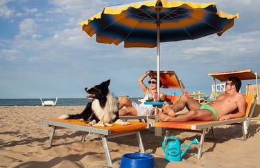 Bagno 82 - Spiaggia