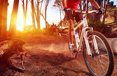 Bike Park mountain bike