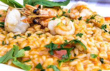 palm-beach-risotto