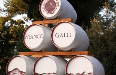 Cantina Franco Galli - Botti