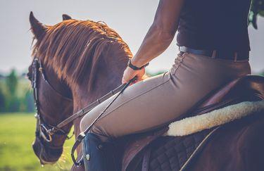 scuderia-del-borgo-equitazione