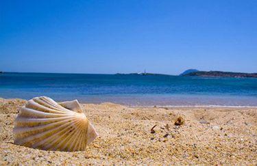 Hotel Fedora - Spiaggia Conchiglia