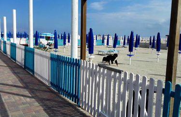 Bagno Trinidad - Spiaggia Cani