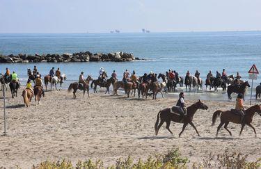 Aloha Beach passeggiata a cavallo 3