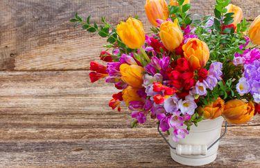 il-tulipano-mazzo-fiori2