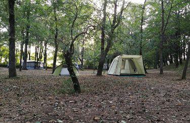 Alto Savio Camping - Piazzola