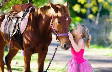 scuderia del borgo - pony bambino