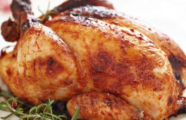 pollo & Friends - Pollo