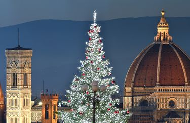 Hotel Grifone - Firenze