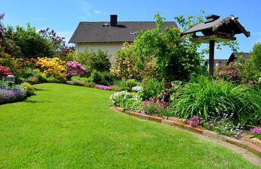 Mondoverde giardinaggio