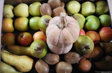 Azienda Agricola Dolcetti - Cesto di Frutta