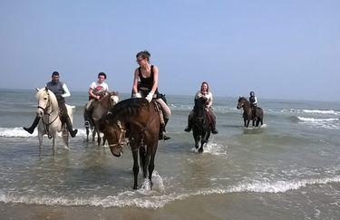 Aloha Beach passeggiata a cavallo 5