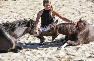 Aloha Beach passeggiata a cavallo 4